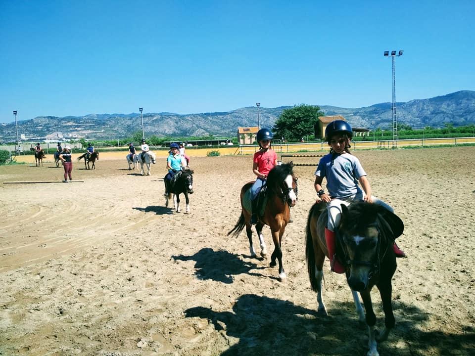 Poni club Castelló paseos a caballo