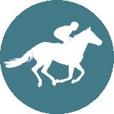 Poni club escuela de equitacion icon b