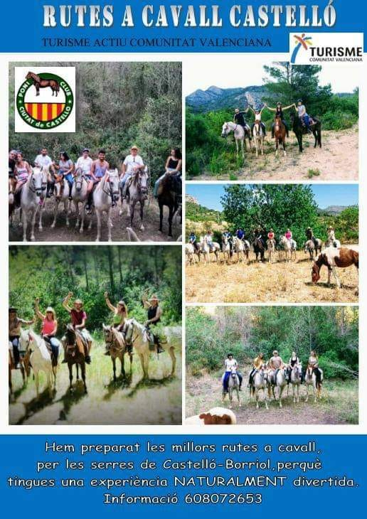Rutes a cavall castelló Poni club